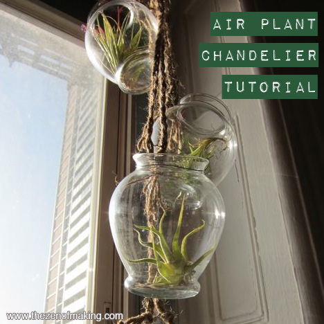 Tutorial: Air Plant Chandelier | Red-Handled Scissors