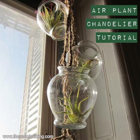Tutorial: Air Plant Chandelier | The Zen of Making