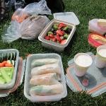 memorial_day_picnic