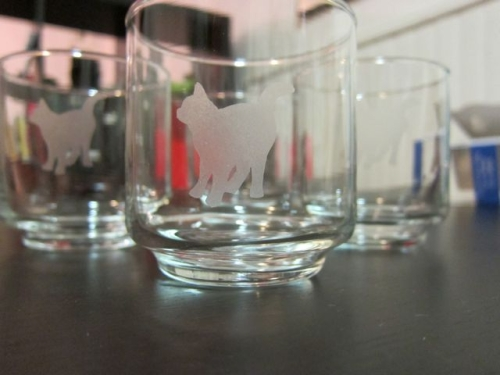 Cat Silhouette Etched Glasses | Red-Handled Scissors