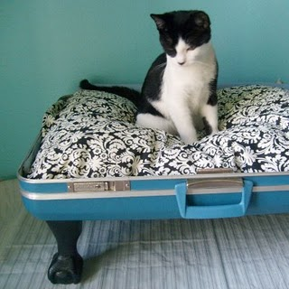 Friday Internet Crushes: Suitcase Pet Beds | The Zen of Making