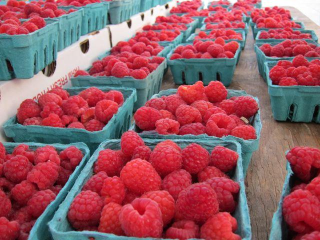 Sunday Snapshot: Raspberry Appreciation | Red-Handled Scissors