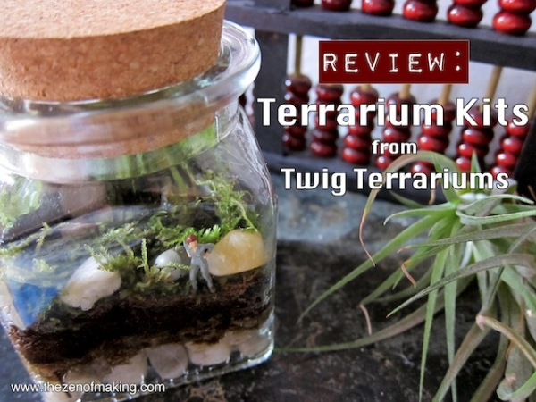 Terrarium_Review_Medium2