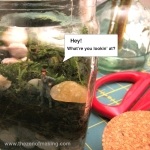 Sunday Snapshot: Terrarium Teaser | Red-Handled Scissors