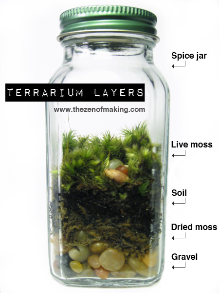 TutorialSpice Jar Mini Terrariums The Zen of Making