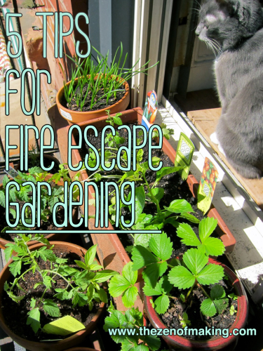 5 Tips for Successful Fire Escape and Container Gardening | The Zen of Making