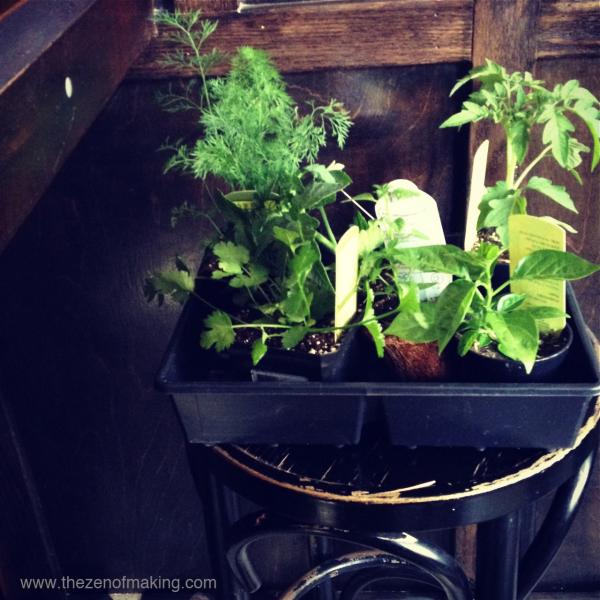 thezenofmaking_plants_at_the_bar