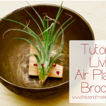 air_plant_brooch_title_tzom
