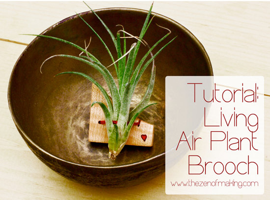 Tutorial: Living Air Plant Brooch for Craftzine.com | Red-Handled Scissors