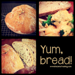 Things I Made from the Internet: No-Knead Bread | Red-Handled Scissors