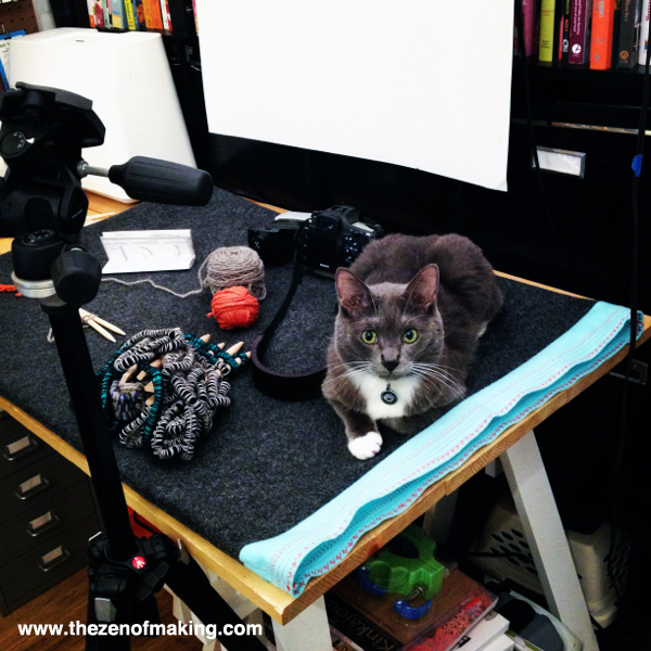Monday Snapshot: Simon the Cat, Craft Photo Stylist | The Zen of Making