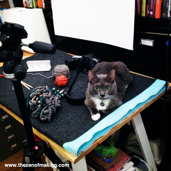 Monday Snapshot: Simon the Cat, Craft Photo Stylist | The Zen of Making